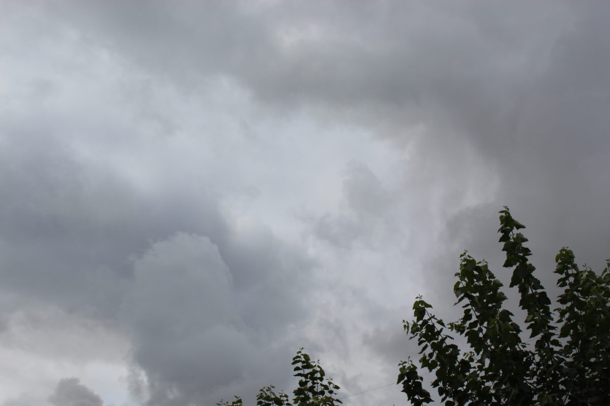 Скаждым днём всё больше небо хмурится